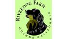 riverdog-farm