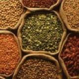 seed-exchange